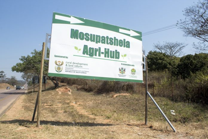 The seemingly bottomless moneypit often referred to as the Masupatshela Agri-Hub, by politicians and their cadres. Photo: Joe Dreyer